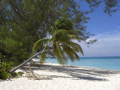 Beach on Grand Cayman Author- Poco a poco (Creative Commons)