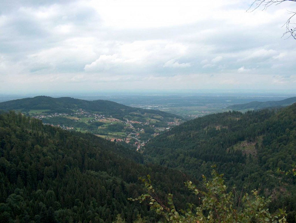 Black Forest, Germany (creative commons)