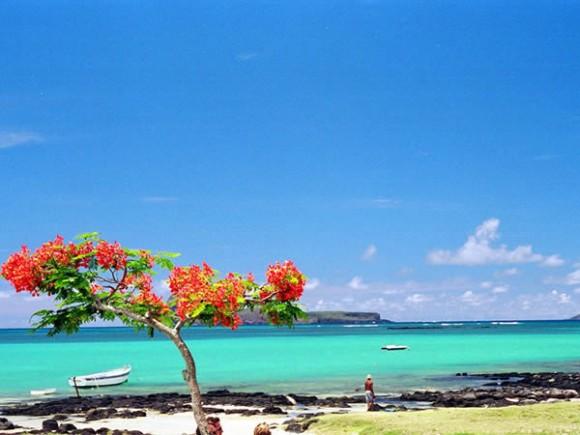 Mauritius (Creative Commons)